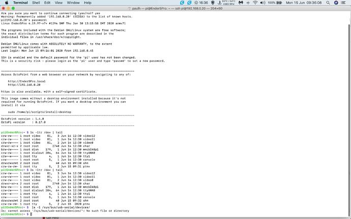 Screenshot 2020-06-15 at 09.36.08